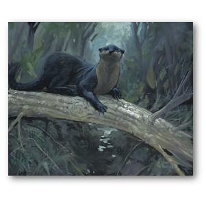 Lewis Lavoie Art: River Otter