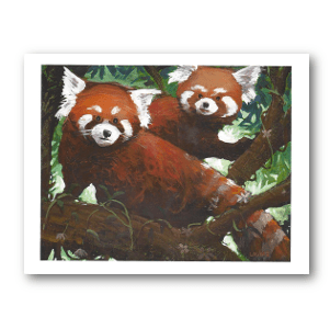 Red Panda Gift Card Set
