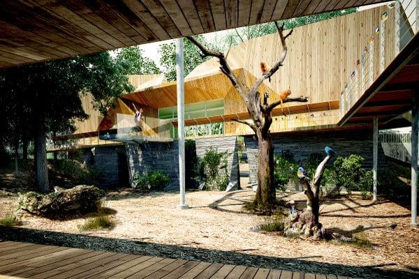 Nature's Wild Backyard : 11