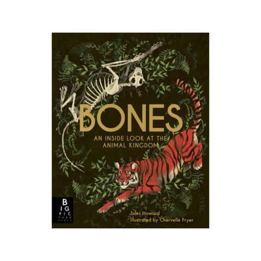 Bones An Inside Look